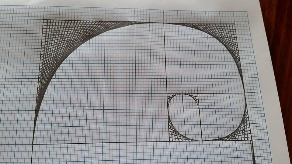 Leona-Tai_Fun-with-fibonacci-parabola